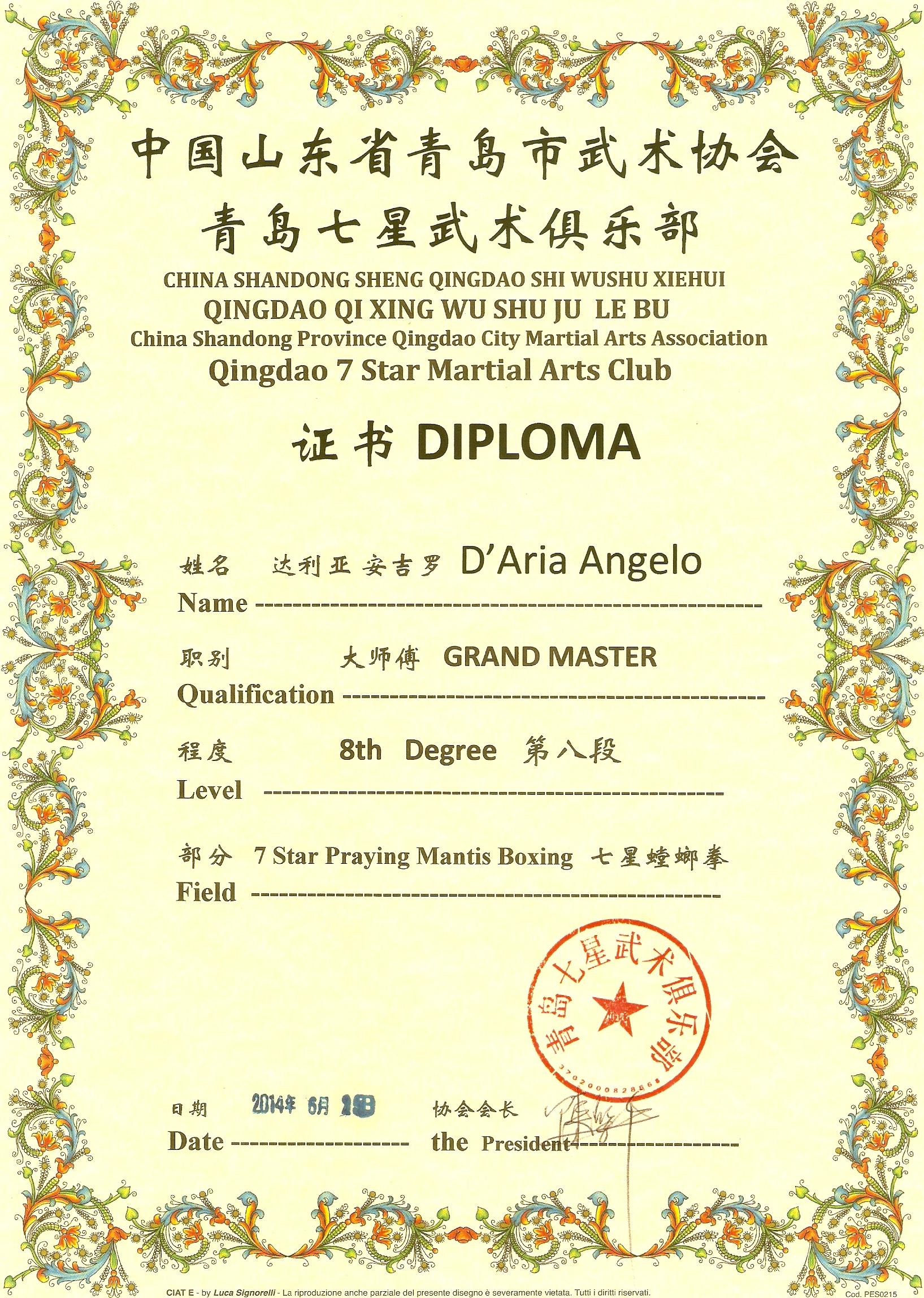 D'Aria Angelo 8° Duan Expert Master